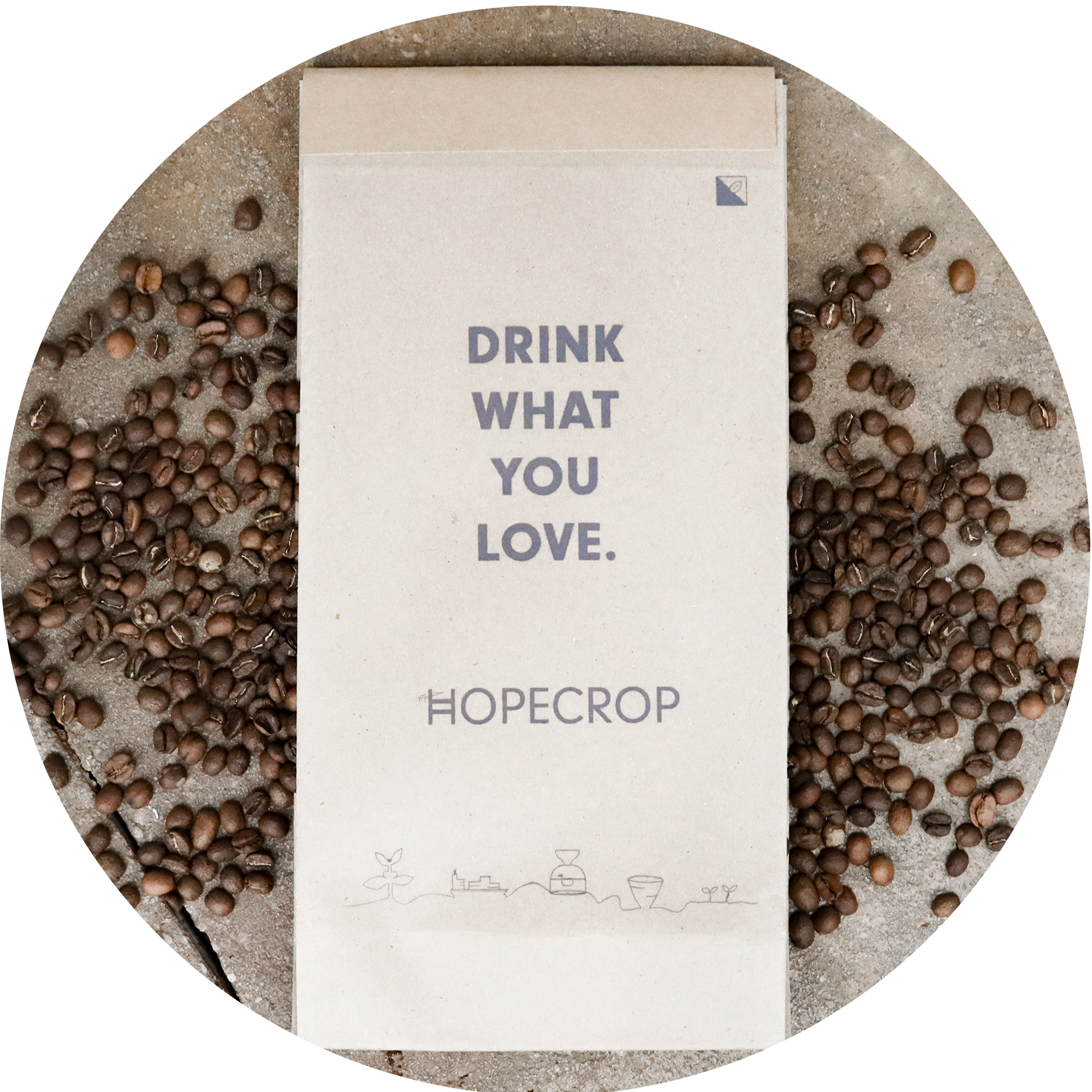 seeds coffee subscription